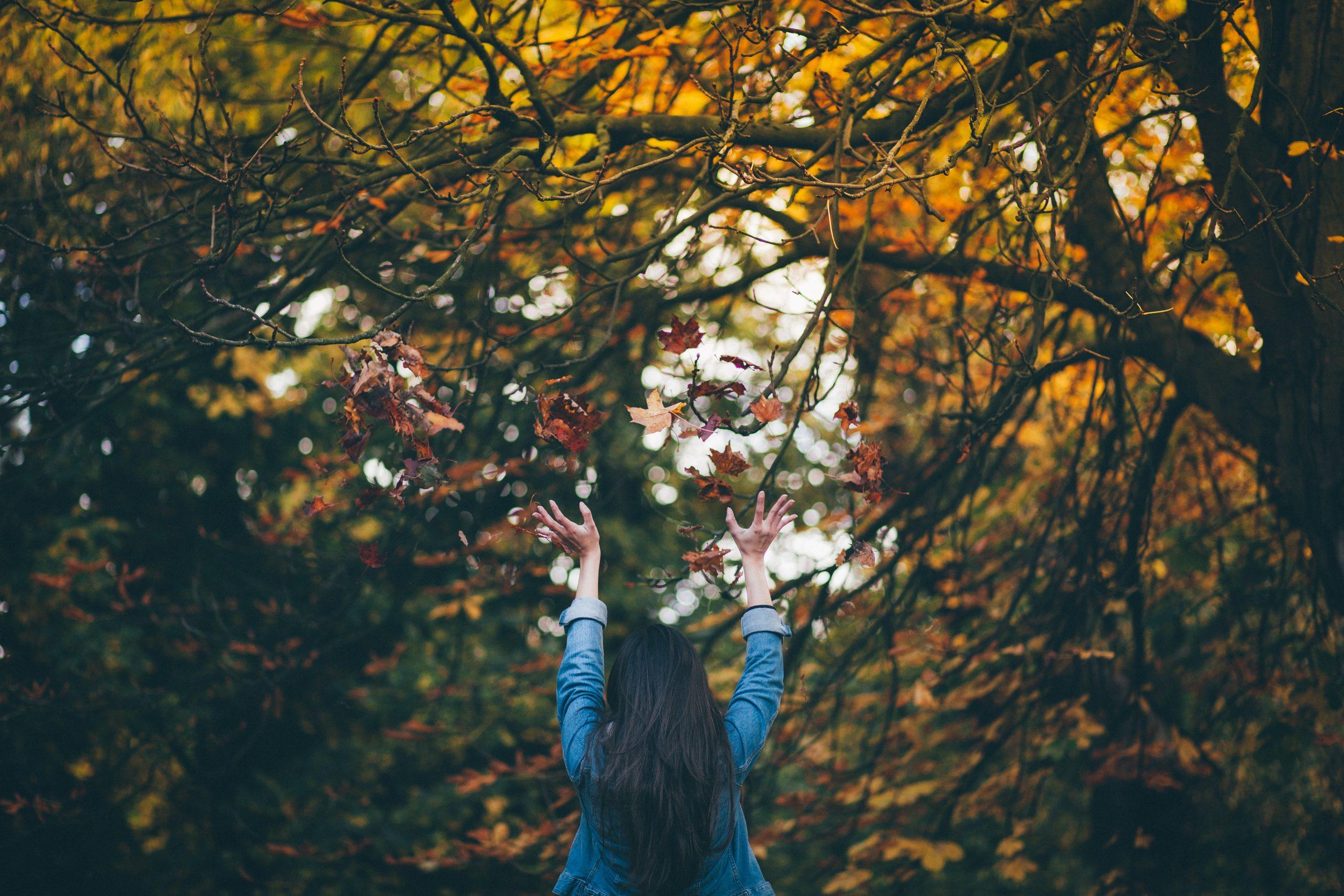 Injerto capilar en otoño